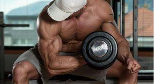 The Muscle Fiber Destruction Workout