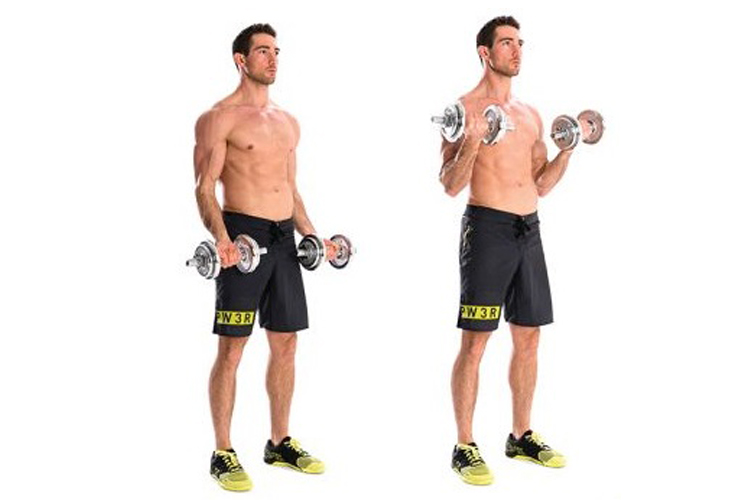 Best Bicep Workouts for Strong and Impressive Arms - standing dumbbell curl