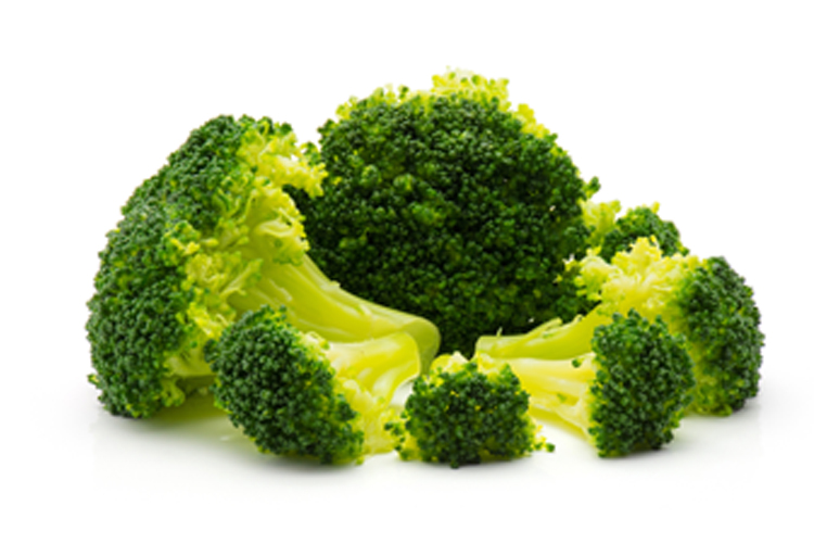 Top 10 Low Carb Fruits and Vegetables to eat on the keto diet - Broccoli